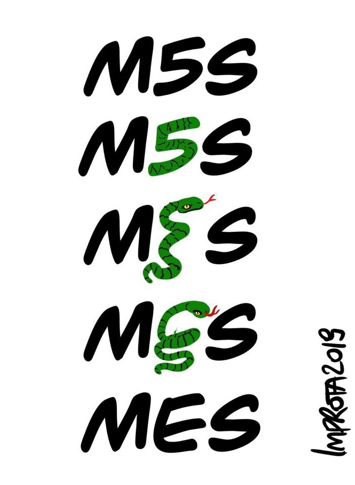 mes m5s.jpg